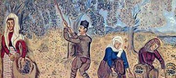 Zeytinin Tarihçesi